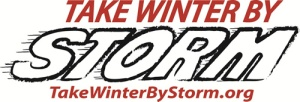 Take Winter by Storm Logo